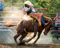 Oak Hill Bronc Riding